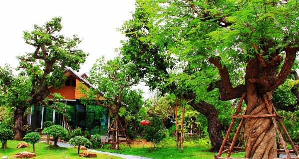 jasa pembuatan taman resort