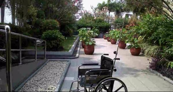 jasa pembuatan taman rumah sakit