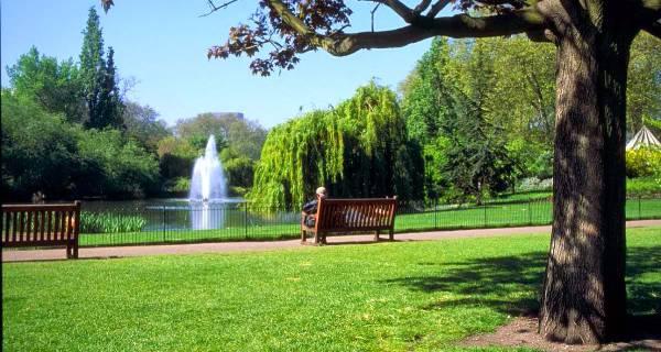 Jasa Taman Kota