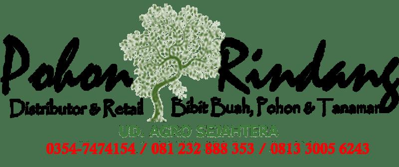 Jual Bibit Tanaman dan Jasa Pembuatan Taman